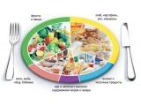 Гостиничный комплекс Гвоздика - иконка «питание» в Солтоне